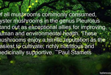 Paul Stamets Quote